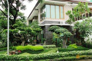 Jasa Ahli Tukang Pembuatan Bikin Taman Jogja Taman Rumah Minimalis
